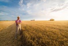 Jeune exploitant agricole dans des domaines de blé pendant la récolte en été photo libre de droits