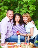Jeune famille heureuse avec la fille sur le pique-nique Image stock