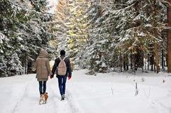 Jeune famille marchant avec un chien dans la forêt d'hiver des vacances Photos libres de droits
