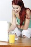 Jeune femme à l'aide de l'ordinateur portatif à la maison Photographie stock libre de droits