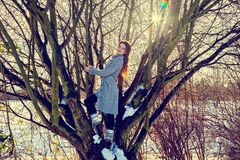 Jeune femme à l'humeur espiègle se tenant sur l'arbre Image stock