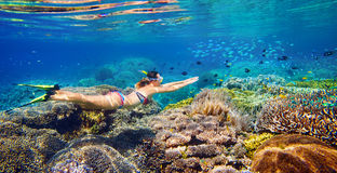 Jeune femme à naviguer au schnorchel dans l'eau tropicale photographie stock libre de droits