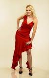 Jeune femme attirant dans la robe de soirée. Verticale. Images stock