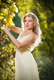 Jeune femme attirante dans un paysage romantique d'automne Photo stock