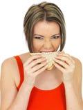Jeune femme attirante en bonne santé mangeant un sandwich à pain de Brown de saumons et de concombre Photo libre de droits