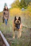 Jeune femme attirante marchant avec son berger allemand de chien à la forêt d'automne, près de la manière de rail - l'animal fami Photos libres de droits