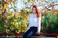 Jeune femme attirante s'asseyant en parc coloré d'automne Photo libre de droits