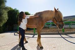 Jeune femme attirante toilettant un cheval aux écuries Image libre de droits