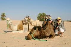 Jeune femme avec des chameaux au Sahara Image libre de droits