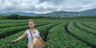 Jeune femme avec des yeux fermés appréciant le beau paysage des champs de thé photo stock