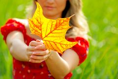 Jeune femme avec la lame d'automne photo stock