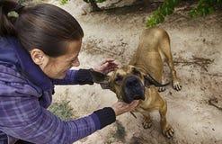 Jeune femme avec le chien de chien en nature Photographie stock libre de droits