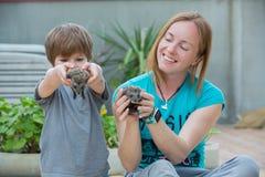 Jeune femme avec le fils jouant avec le bébé de hérisson Images libres de droits