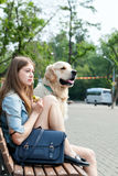 Jeune femme avec le golden retriever de chien dans une ville d'été Image libre de droits