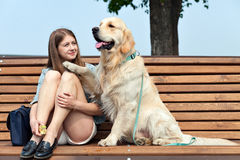 Jeune femme avec le golden retriever de chien dans une ville d'été Photographie stock