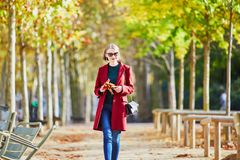 Jeune femme avec le groupe de feuilles d'automne colorées Images libres de droits