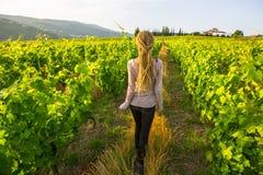 Jeune femme avec les dreadlocks blonds ayant l'amusement dans le vignoble Agriculture photos libres de droits