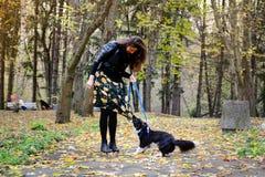 Jeune femme avec son chien de border collie jouant en parc d'automne Images libres de droits