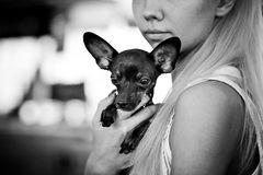 Jeune femme avec son crabot Photos stock