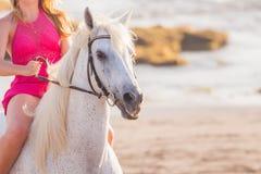Jeune femme conduisant un cheval Photo libre de droits