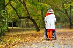 Jeune femme courant le fauteuil roulant en parc Image stock