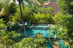 Jeune femme détendant dans la piscine extérieure entourée avec la verdure tropicale luxuriante d'Ubud, Bali photos stock