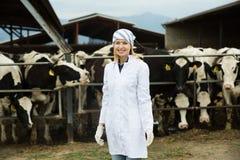 Jeune femme dans la robe blanche à l'exploitation d'élevage Images stock