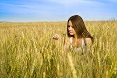 Jeune femme dans le domaine Image stock