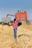 Jeune femme dans le domaine de blé pendant la récolte photographie stock libre de droits