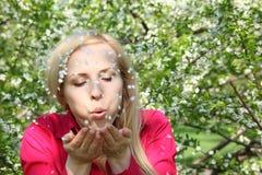 Jeune femme de beauté enlevant à l'air comprimé des pétales Photo stock