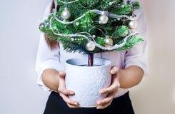 Jeune femme de bureau tenant un petit arbre de Noël Images libres de droits