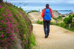 Jeune femme de randonneur avec le sac à dos en nature, Ploumanach, France Photo libre de droits