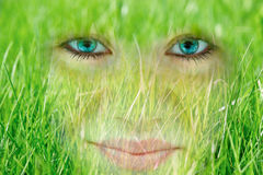 Jeune femme de sourire qui a absorbé par l'herbe Photographie stock