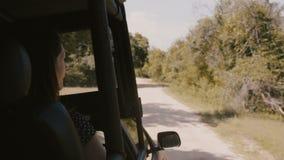 Jeune femme de touristes de sourire heureuse appréciant excitant le tour dans la conduite de safari le long de la forêt ensoleill banque de vidéos