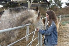 Jeune femme donnant l'affection à quelques chevaux Image stock