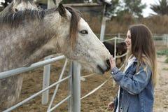 Jeune femme donnant l'affection à quelques chevaux Photographie stock