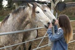 Jeune femme donnant l'affection à quelques chevaux Photos libres de droits