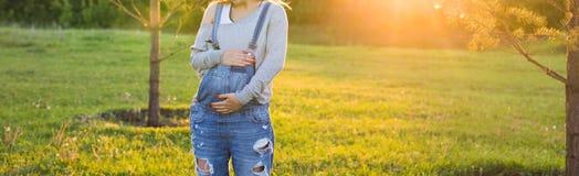 Jeune femme enceinte heureuse détendant et appréciant la vie en nature d'automne Photos libres de droits