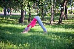 Jeune femme faisant le yoga et la gymnastique en parc Photo stock