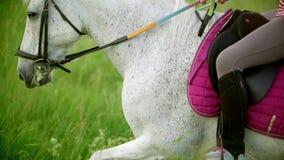 Jeune femme galopant sur le cheval par le pré à la soirée d'été clips vidéos
