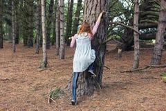 Jeune femme grimpant à un arbre Images libres de droits