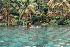 Jeune femme heureuse dans une piscine tropicale d'infini Lieu de villégiature luxueux sur l'île de Bali photos libres de droits