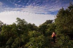 Jeune femme marchant dans la forêt Photographie stock