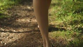 Jeune femme marchant dans la forêt nu-pieds banque de vidéos