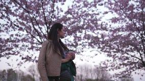 Jeune femme marchant en parc avec du caf? potable de floraison de Sakura de r?ver de tasse de papier banque de vidéos