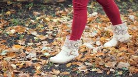 Jeune femme marchant en parc d'automne sur les feuilles jaunes clips vidéos