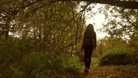 Jeune femme marchant par la forêt d'automne tenant un panier de pique-nique Agrafe de steadicam de mouvement lent banque de vidéos