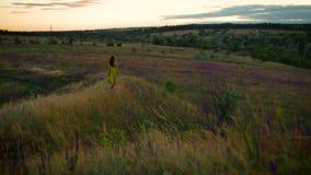 Jeune femme marchant sur le gisement de fleurs winded dans le temps de coucher du soleil banque de vidéos