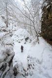 Jeune femme montrant CORRECT pendant les chutes de neige dures dans la forêt d'hiver Photographie stock libre de droits