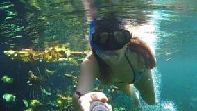 Jeune femme naviguant au schnorchel dans l'eau bleue claire clips vidéos